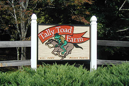 Tally Toad Farm Sign